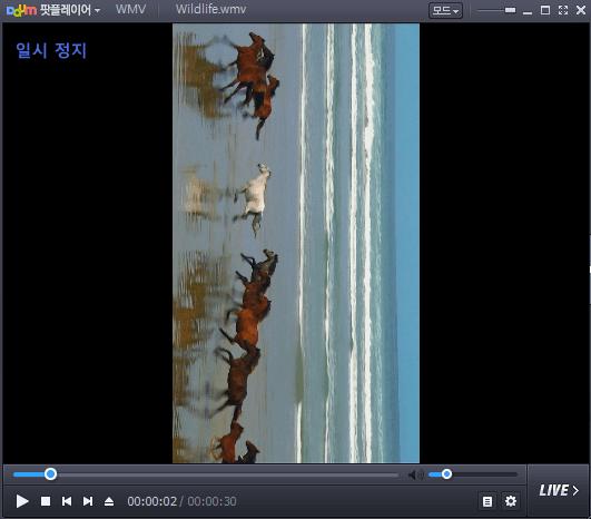 다음팟 화면 회전_003-min